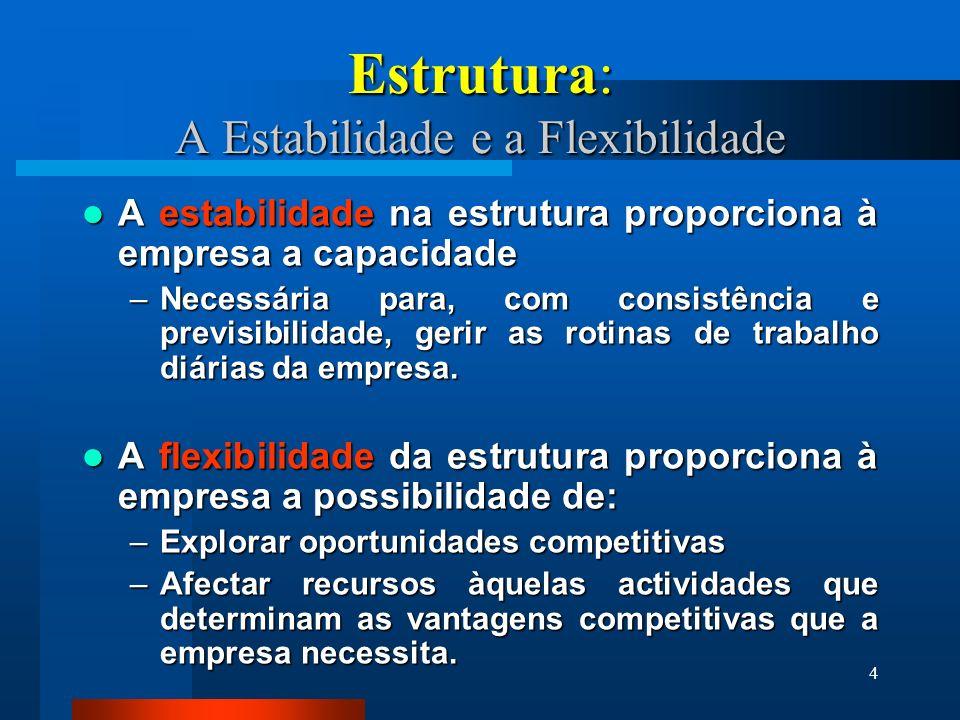 4 Estrutura: A Estabilidade e a Flexibilidade A estabilidade na estrutura proporciona à empresa a capacidade A estabilidade na estrutura proporciona à empresa a capacidade –Necessária para, com consistência e previsibilidade, gerir as rotinas de trabalho diárias da empresa.