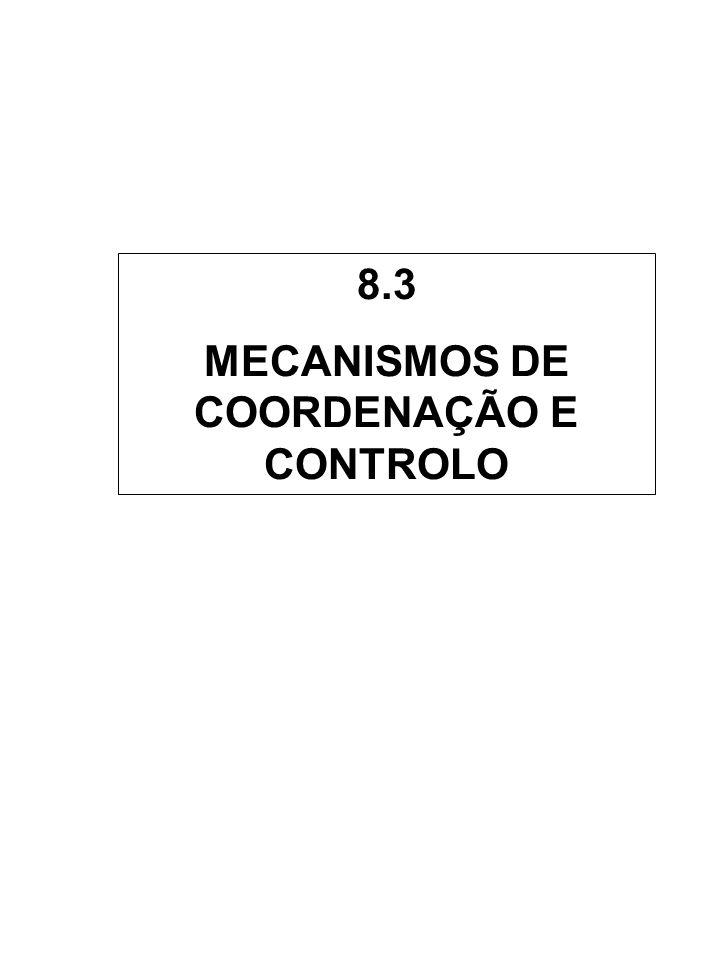 8.3 MECANISMOS DE COORDENAÇÃO E CONTROLO