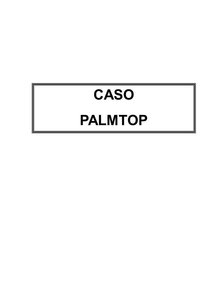 CASO PALMTOP