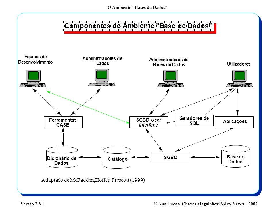 O Ambiente Bases de Dados © Ana Lucas/ Chaves Magalhães/Pedro Neves – 2007Versão 2.6.1 Funções da Administração de Base de Dados Revisão do modelo lógico de dados Elaboração do modelo físico de dados Implementação de Normas várias Implementação de Segurança Implementação de Recuperação Implementação de Integridadade Parametrização global do optimizador Controlo da Performance Alteração do modelo físico da BD em casos de fraca performance