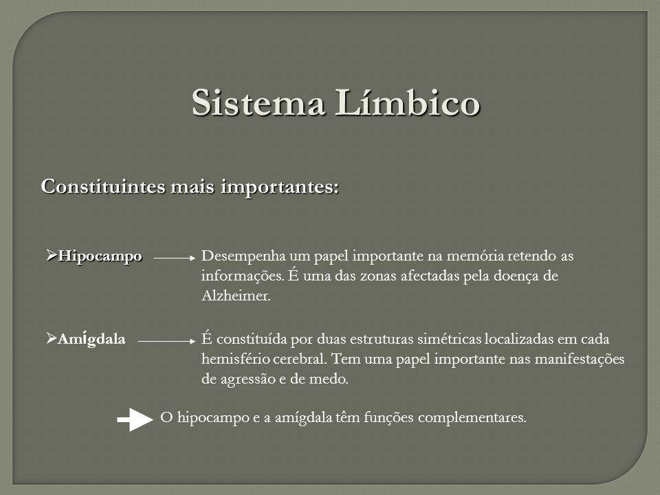 Sistema Límbico Constituintes mais importantes: Hipocampo Hipocampo Am í gdala Am í gdala É constituída por duas estruturas simétricas localizadas em