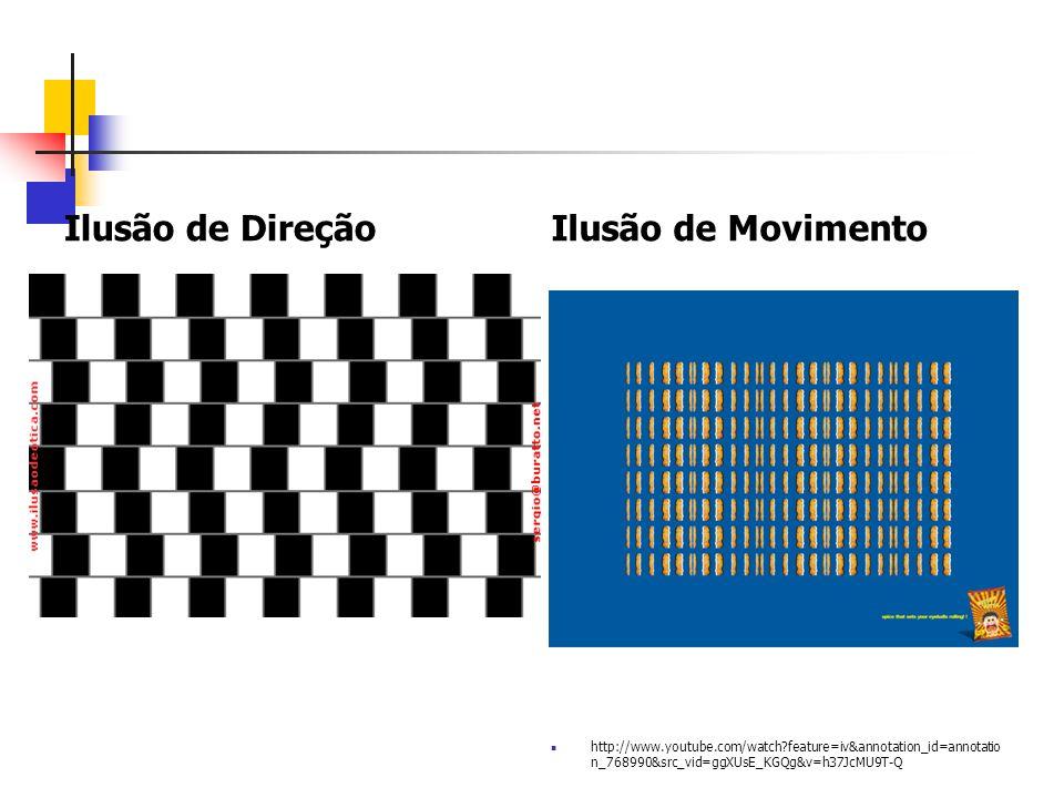 Ilusão da Cor http://www.youtube.com/ watch?v=aV2NoGW_4zQ &feature=player_embedd ed