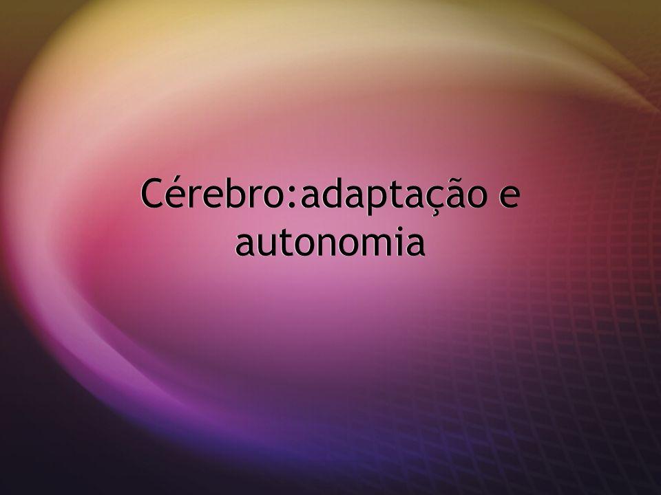 Cérebro:adaptação e autonomia