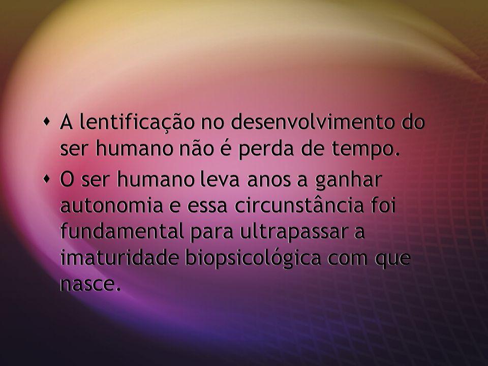 A lentificação no desenvolvimento do ser humano não é perda de tempo. O ser humano leva anos a ganhar autonomia e essa circunstância foi fundamental p