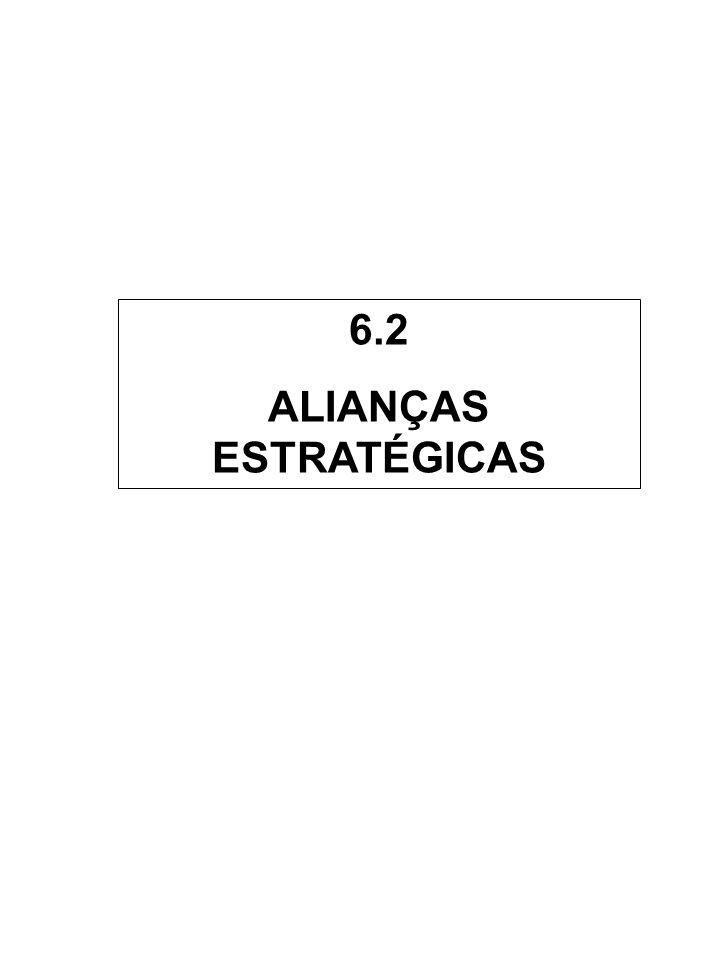 6.2 ALIANÇAS ESTRATÉGICAS