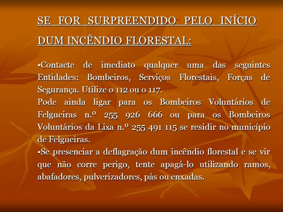 SE FOR SURPREENDIDO PELO INÍCIO DUM INCÊNDIO FLORESTAL: Contacte de imediato qualquer uma das seguintes Entidades: Bombeiros, Serviços Florestais, For