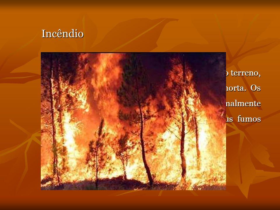 Incêndio Um incêndio pode propagar-se pela superfície do terreno, pelas copas das árvores e através da manta morta. Os incêndios de grandes proporções