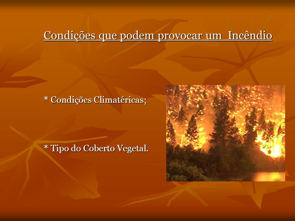Condições que podem provocar um Incêndio * Condições Climatéricas; * Tipo do Coberto Vegetal.