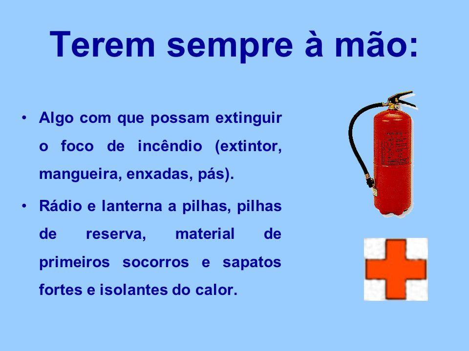 Terem sempre à mão: Algo com que possam extinguir o foco de incêndio (extintor, mangueira, enxadas, pás).