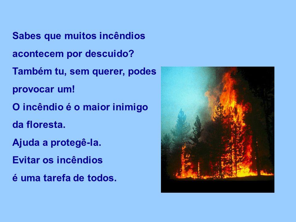 Sabes que muitos incêndios acontecem por descuido.