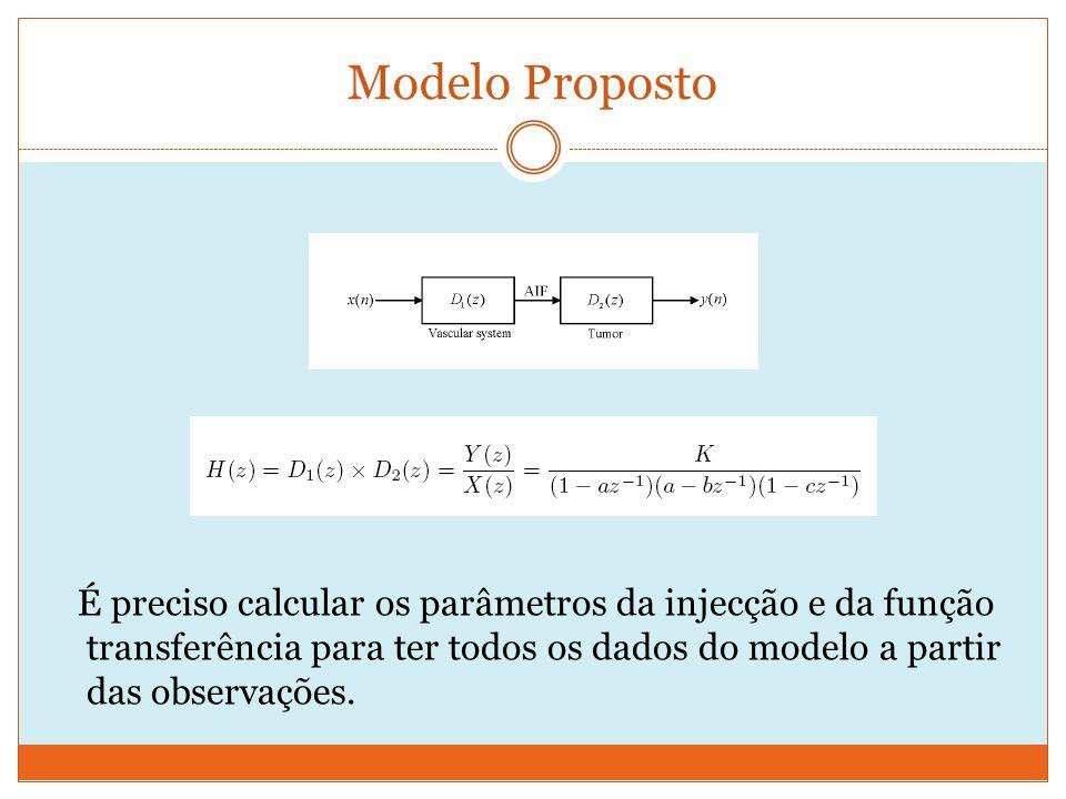 Modelo Proposto É preciso calcular os parâmetros da injecção e da função transferência para ter todos os dados do modelo a partir das observações.