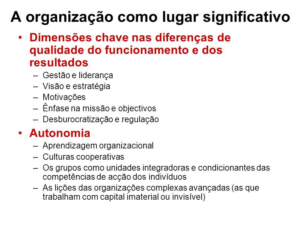 A organização como lugar significativo Dimensões chave nas diferenças de qualidade do funcionamento e dos resultados –Gestão e liderança –Visão e estr