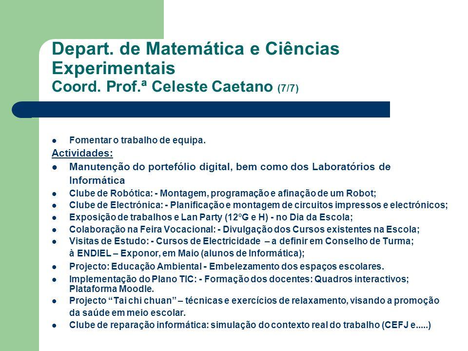 Depart. de Matemática e Ciências Experimentais Coord. Prof.ª Celeste Caetano (7/7) Fomentar o trabalho de equipa. Actividades: Manutenção do portefóli
