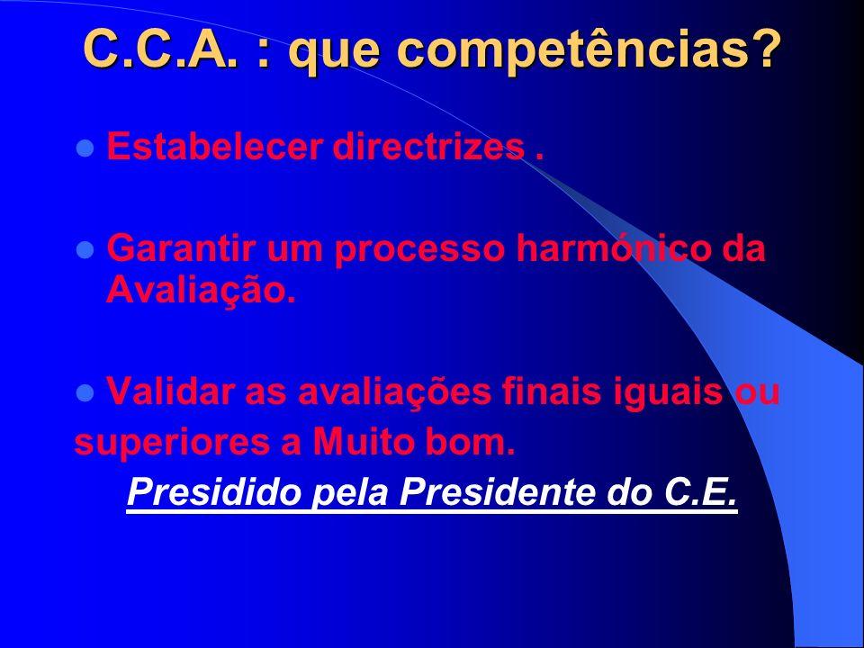 C.C.A. : que competências. Estabelecer directrizes.