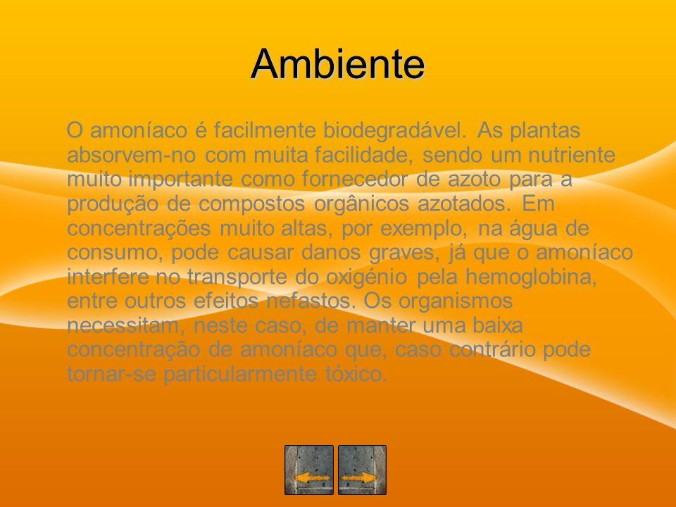 Ambiente O amoníaco é facilmente biodegradável. As plantas absorvem-no com muita facilidade, sendo um nutriente muito importante como fornecedor de az