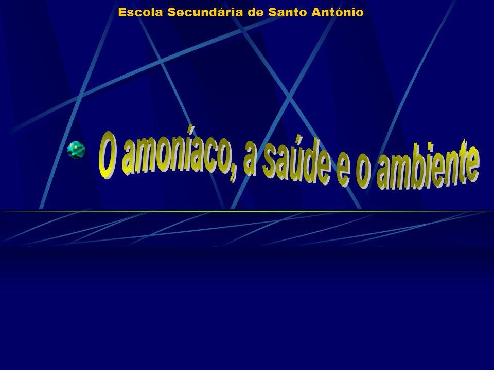 Escola Secundária de Santo António