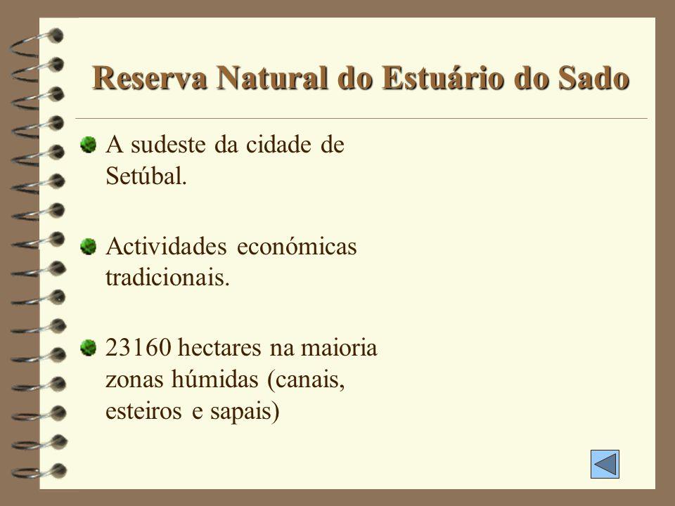 Parque Natural da Arrábida 10800 hectares entre Sesimbra e Setúbal, Palmela e o Oceano Atlântico. Constituição calcária. Vegetação tipicamente mediter