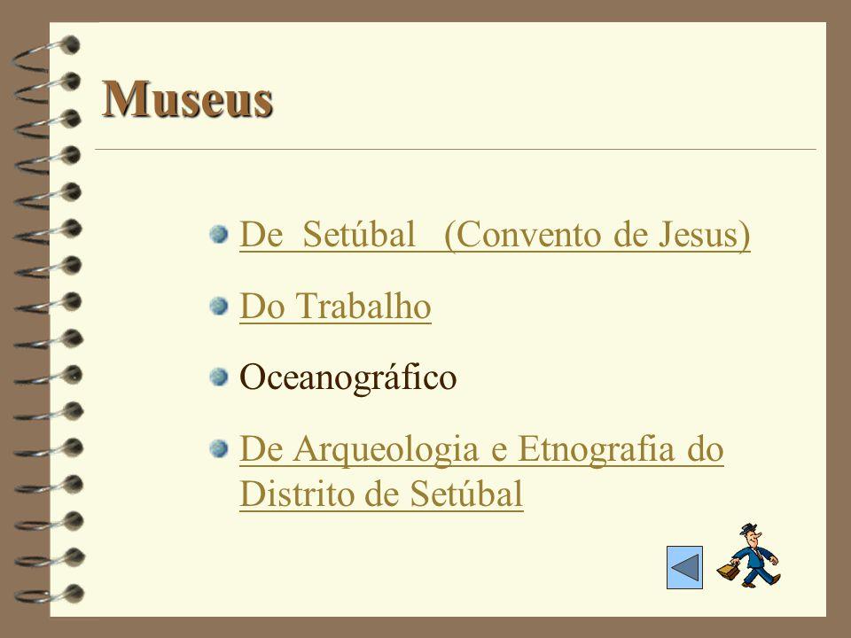 Museus De Setúbal (Convento de Jesus) Do Trabalho Oceanográfico De Arqueologia e Etnografia do Distrito de Setúbal