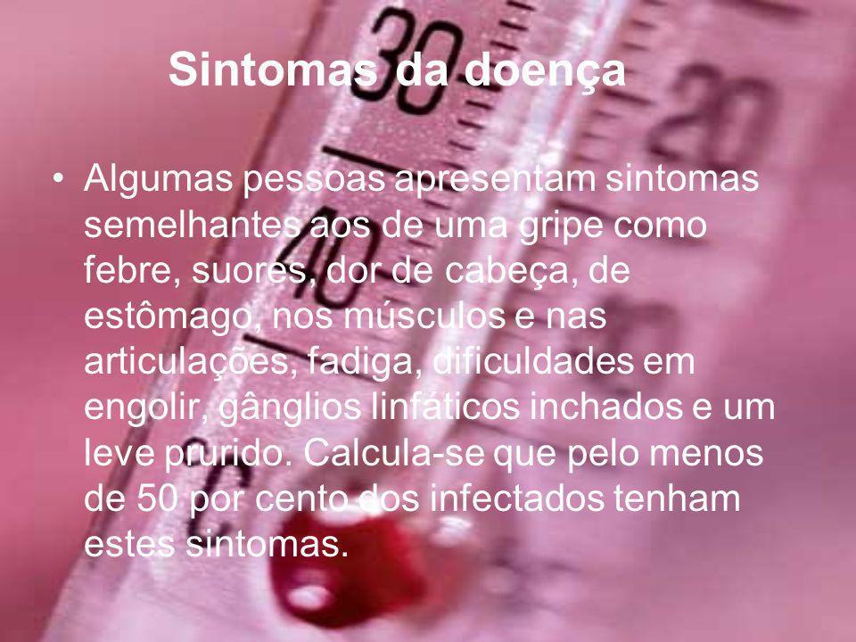 Realizado por : Sandra Teixeira Joana Figueiredo Miguel Matos Carolline Ferreira