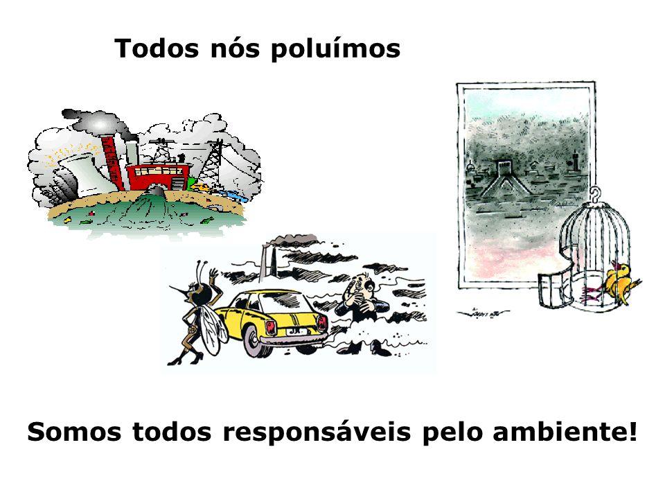 Todos nós poluímos Somos todos responsáveis pelo ambiente!