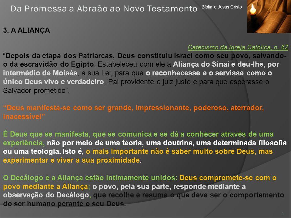 Bíblia e Jesus Cristo 3. A ALIANÇA Catecismo da Igreja Católica, n. 62 Depois da etapa dos Patriarcas, Deus constituiu Israel como seu povo, salvando-
