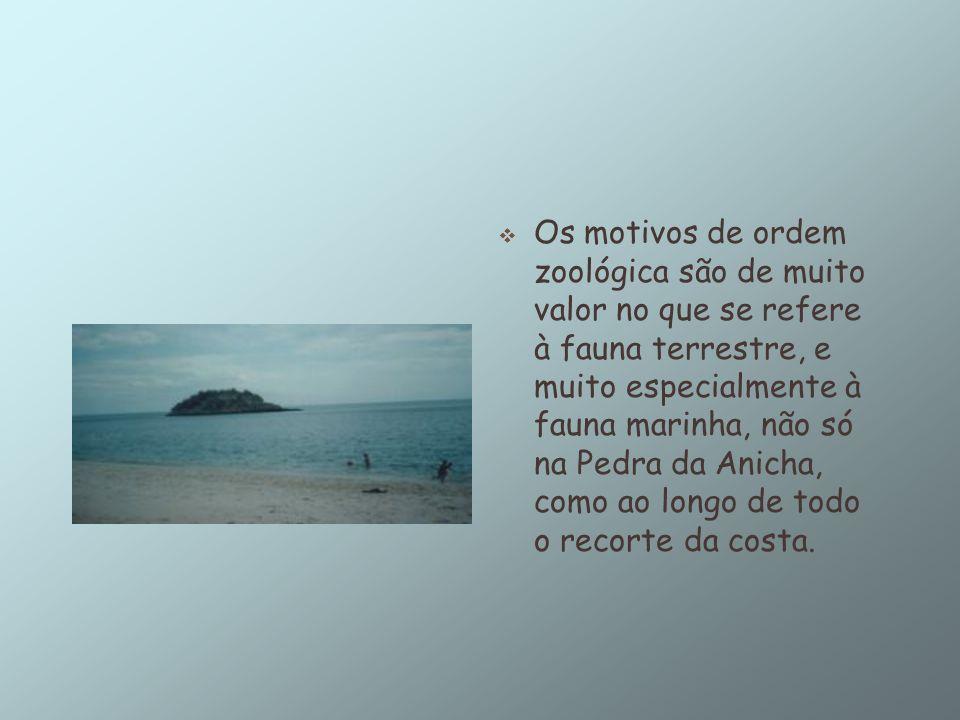 A serra da Arrábida constitui um dos mais valiosos patrimónios naturais portugueses Constitui a serra da Arrábida um extraordinário componente natural de grande valor paisagístico, encenando panorâmicas de grande beleza natural e de secular humanização.