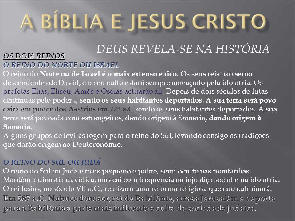 DEUS REVELA-SE NA HISTÓRIA OS DOIS REINOS O REINO DO NORTE OU ISRAEL O reino do Norte ou de Israel é o mais extenso e rico.