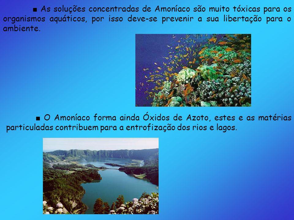 O Amoníaco forma ainda Óxidos de Azoto, estes e as matérias particuladas contribuem para a entrofização dos rios e lagos. As soluções concentradas de