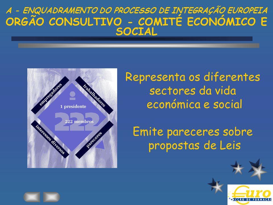 Representa os diferentes sectores da vida económica e social Emite pareceres sobre propostas de Leis A - ENQUADRAMENTO DO PROCESSO DE INTEGRAÇÃO EUROP