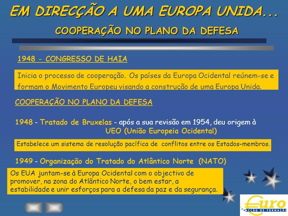 E - AS INSTITUIÇÕES DA UEM As instituições da 2ª Fase (1994-1999): âINSTITUTO MONETÁRIO EUROPEU (IME) âCOMITÉ MONETÁRIO As instituições definitivas (a partir de 1999): âBANCO CENTRAL EUROPEU (BCE) âSISTEMA EUROPEU DE BANCOS CENTRAIS (SEBC) âCOMITÉ ECONÓMICO E FINANCEIRO
