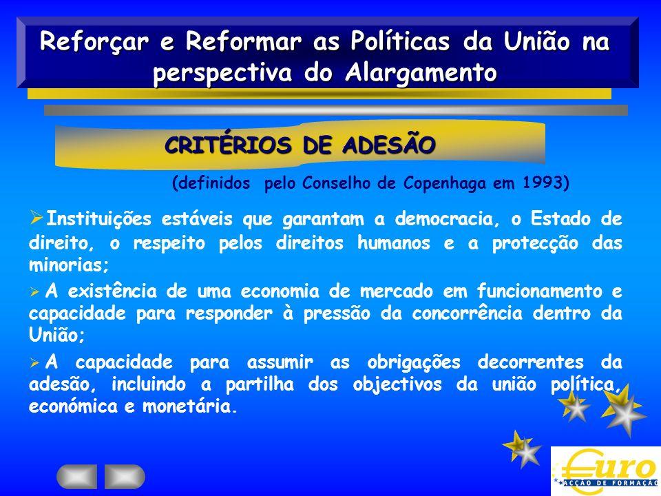 Ø Instituições estáveis que garantam a democracia, o Estado de direito, o respeito pelos direitos humanos e a protecção das minorias; Ø A existência d