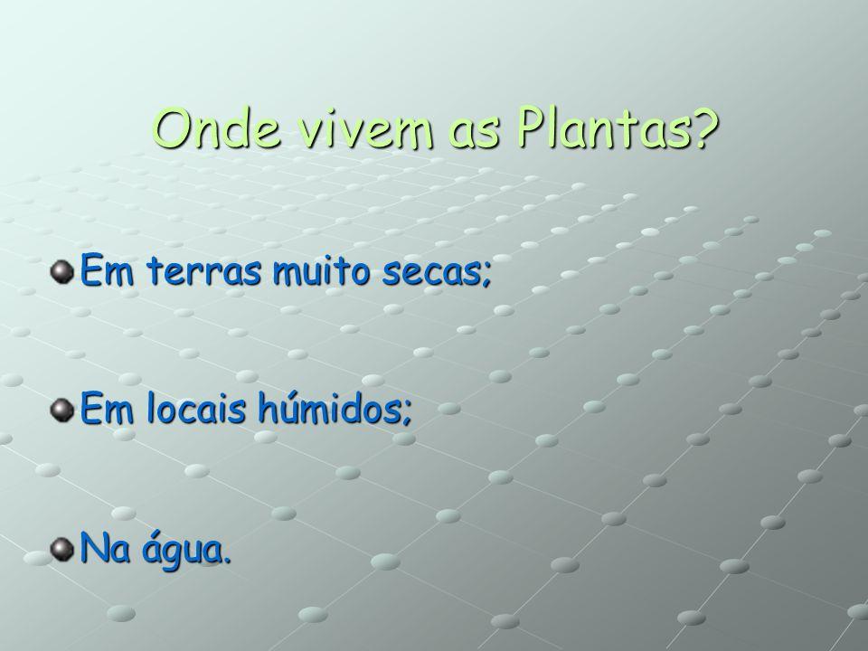 As Plantas podem ser: Espontâneas: são aquelas que nascem sem serem plantadas e que depois não precisam ser tratadas. Cultivadas: são semeadas ou plan
