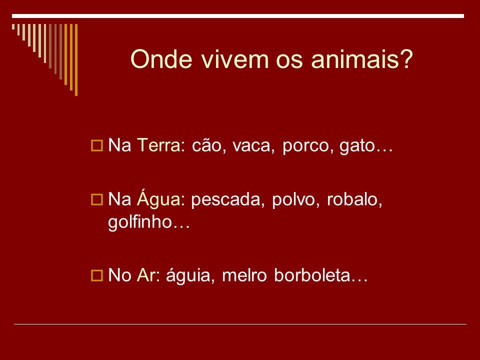 Onde vivem os animais.