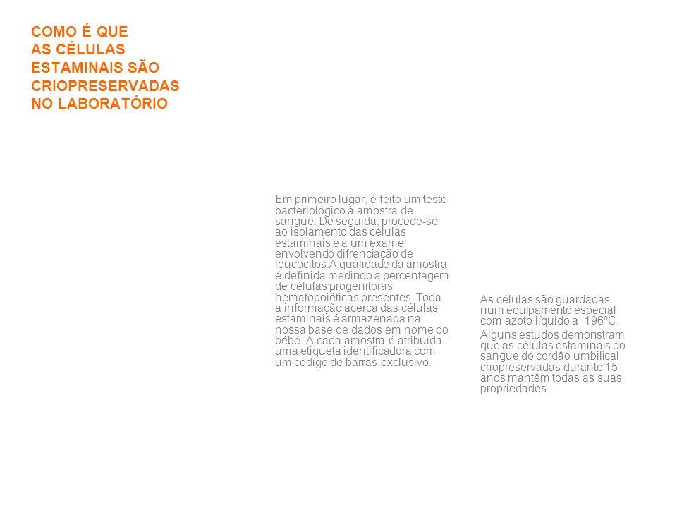 Telefone:239700377 ou 969804104/05 Website: www.crioestaminal.pt Fax:239700378 Correio electrónico: info@crioestaminal.ptinfo@crioestaminal.pt Morada: Rua Pedro Nunes, IPN, 3030-199 Coimbra