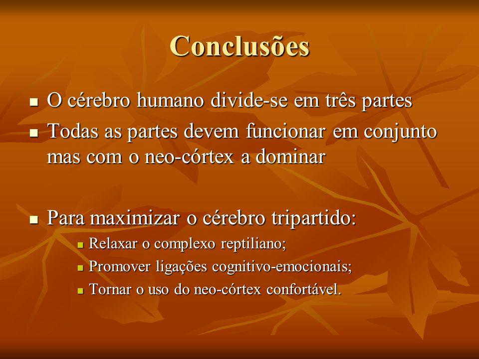 Conclusões O cérebro humano divide-se em três partes O cérebro humano divide-se em três partes Todas as partes devem funcionar em conjunto mas com o n