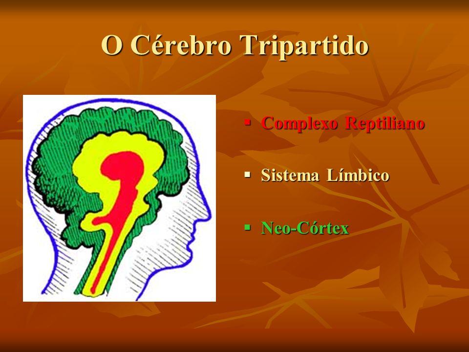 O Cérebro Tripartido Complexo Reptiliano Complexo Reptiliano Sistema Límbico Sistema Límbico Neo-Córtex Neo-Córtex
