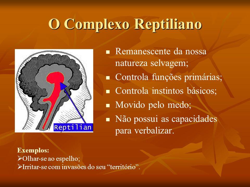 O Complexo Reptiliano Remanescente da nossa natureza selvagem; Controla funções primárias; Controla instintos básicos; Movido pelo medo; Não possui as
