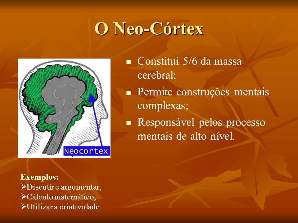 O Neo-Córtex Constitui 5/6 da massa cerebral; Permite construções mentais complexas; Responsável pelos processo mentais de alto nível. Exemplos: Discu