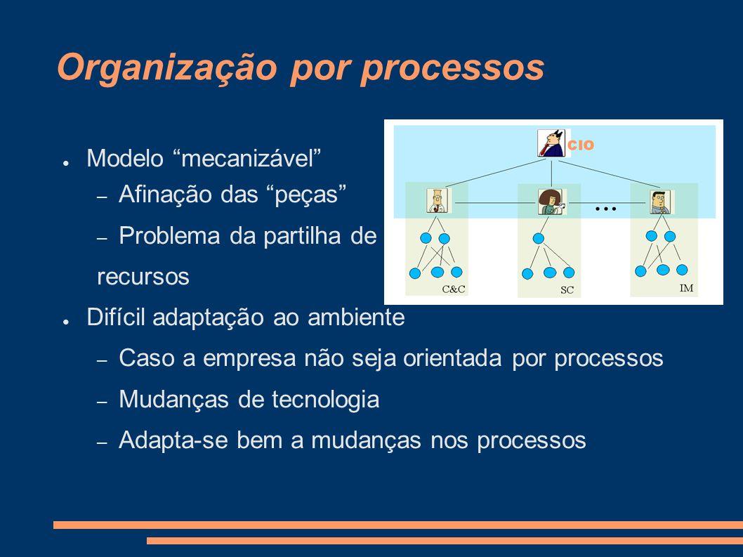 Organização por processos Como Cérebro – Especialização nos processos Aprendizagem em duplo ciclo – Conhecimento concentrado – Falta de redundância Como Sistema Político – Burocracia – Democracia representativa – Co-gestão