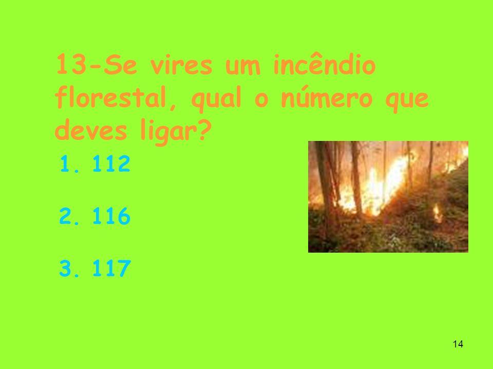 14 13-Se vires um incêndio florestal, qual o número que deves ligar? 1. 112 2. 116 3. 117