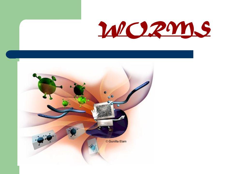Um worm, tal como um vírus, é desenvolvido com o propósito de se copiar a si próprio.