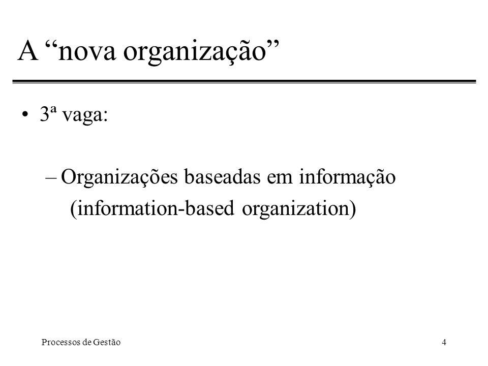 Processos de Gestão4 A nova organização 3ª vaga: –Organizações baseadas em informação (information-based organization)