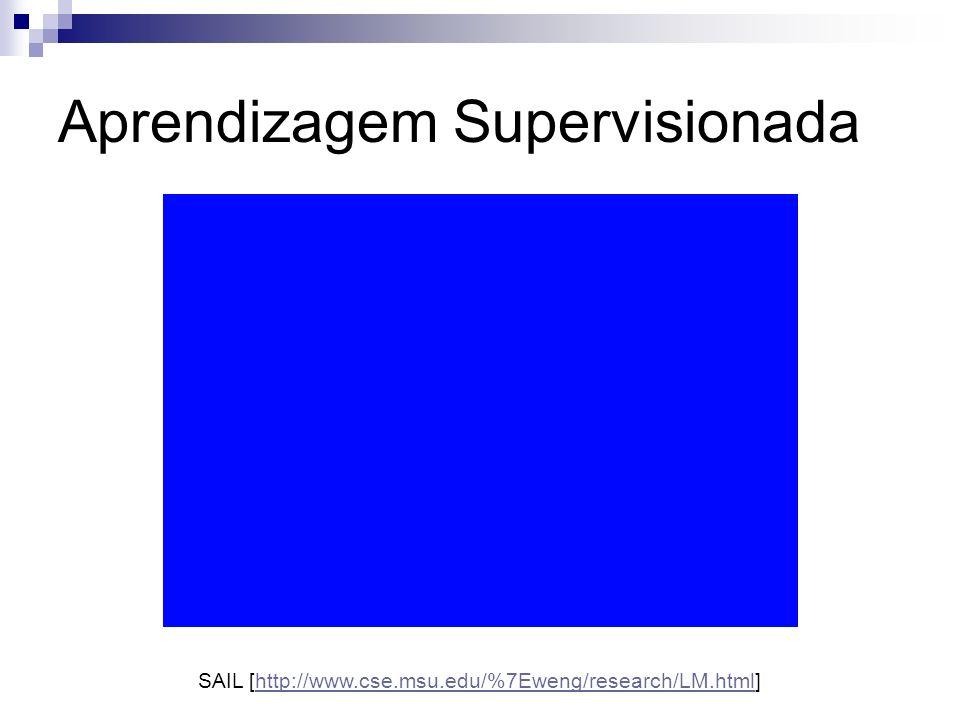 Aprendizagem Supervisionada SAIL [http://www.cse.msu.edu/%7Eweng/research/LM.html]http://www.cse.msu.edu/%7Eweng/research/LM.html
