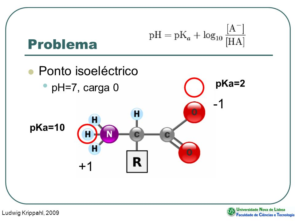 Ludwig Krippahl, 2009 61 Problema Ponto isoeléctrico pH=7, carga 0 pKa=10 pKa=2 +1