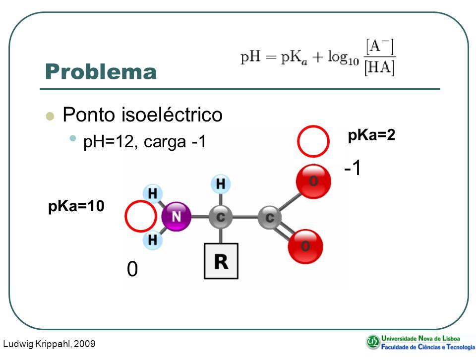 Ludwig Krippahl, 2009 63 Problema Ponto isoeléctrico pH=12, carga -1 pKa=10 pKa=2 0