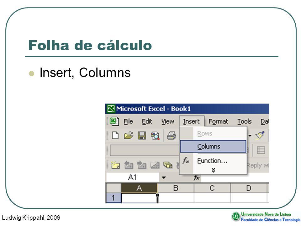 Ludwig Krippahl, 2009 71 Folha de cálculo Insert, Columns