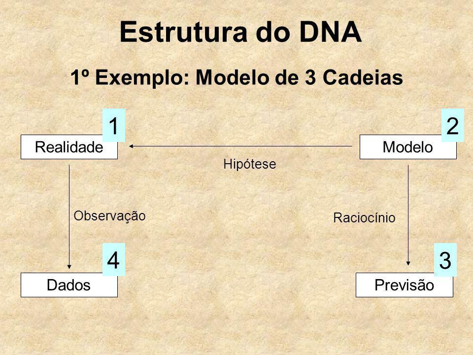 1º Exemplo: Modelo de 3 Cadeias RealidadeModelo Hipótese Dados Observação 4 Previsão 3 Raciocínio 12