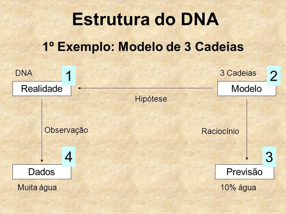 Estrutura do DNA 1º Exemplo: Modelo de 3 Cadeias RealidadeModelo Hipótese Dados Observação 4 Previsão 3 Raciocínio 12 DNA3 Cadeias Muita água10% água