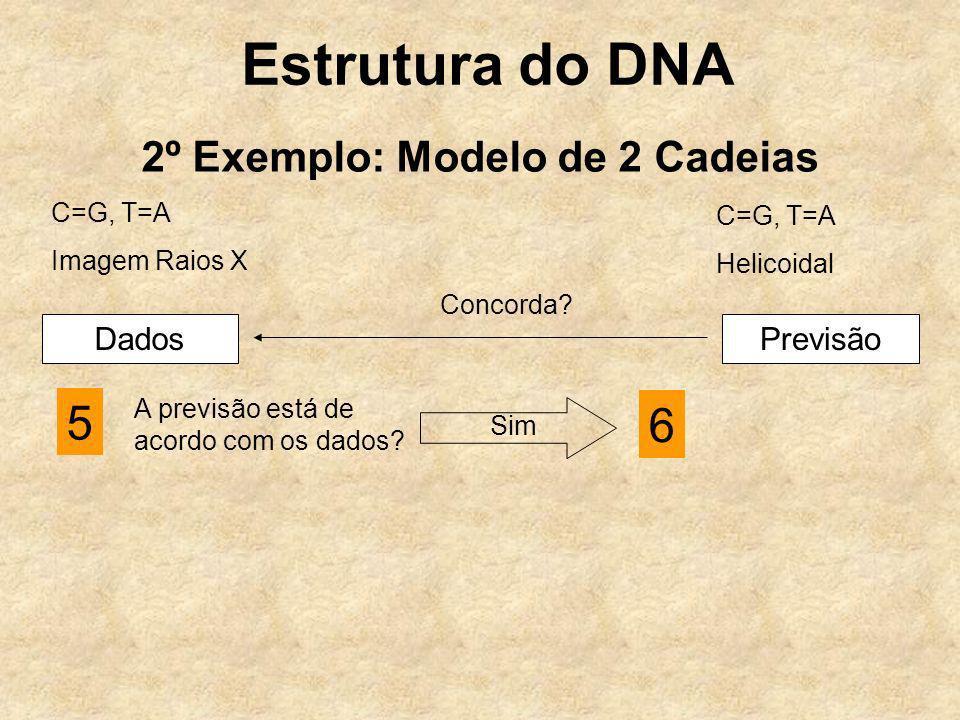 Estrutura do DNA 2º Exemplo: Modelo de 2 Cadeias C=G, T=A Imagem Raios X C=G, T=A Helicoidal DadosPrevisão Concorda? 5 A previsão está de acordo com o
