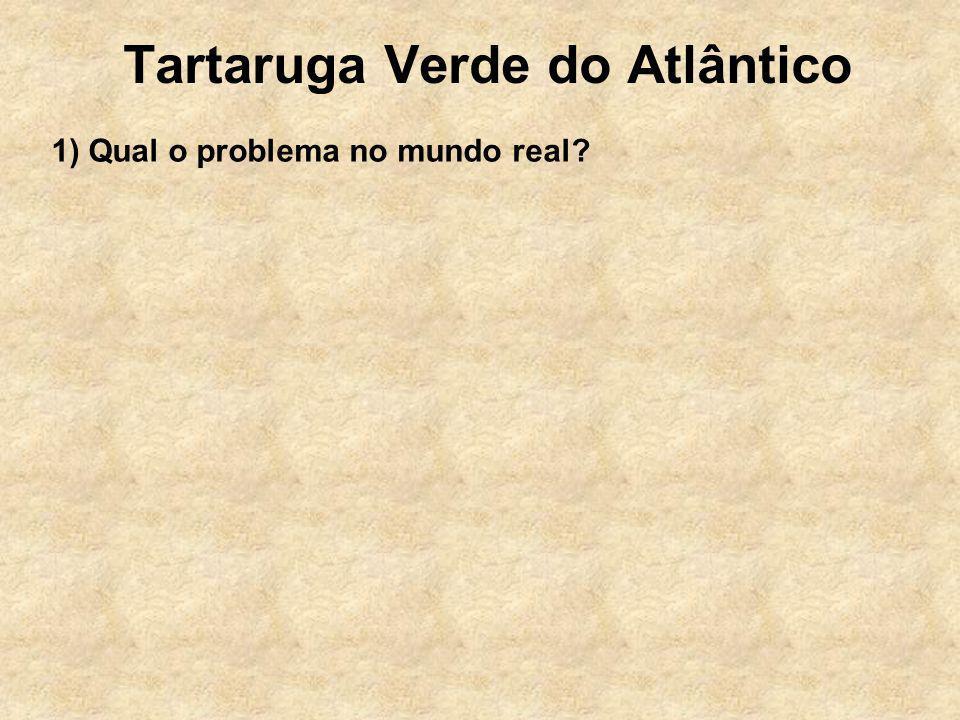 Tartaruga Verde do Atlântico 1) Qual o problema no mundo real?